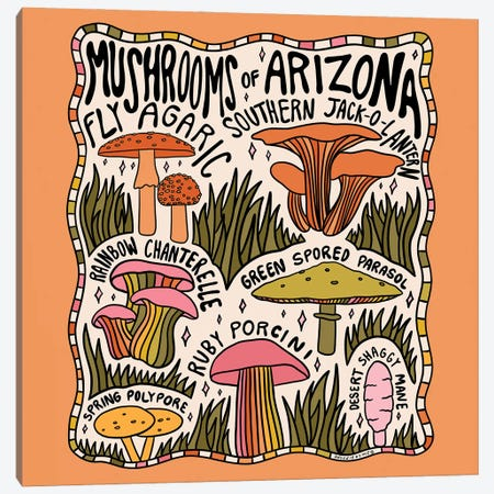 Mushrooms Of Arizona Canvas Print #DDM104} by Doodle By Meg Canvas Wall Art