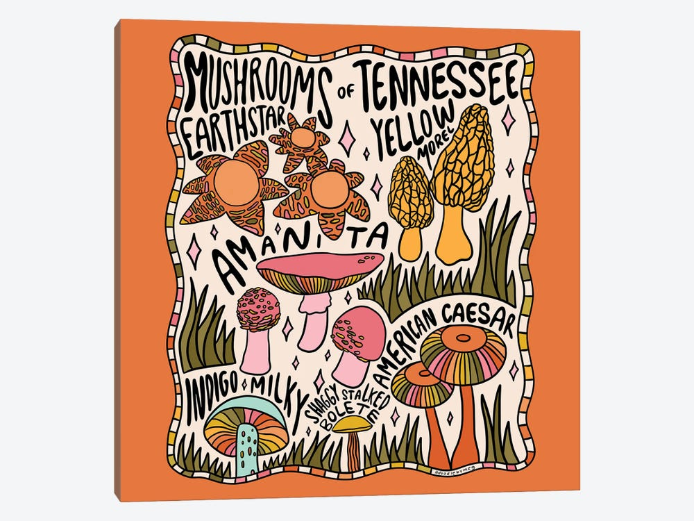 Mushrooms Of Tennessee by Doodle By Meg 1-piece Canvas Wall Art