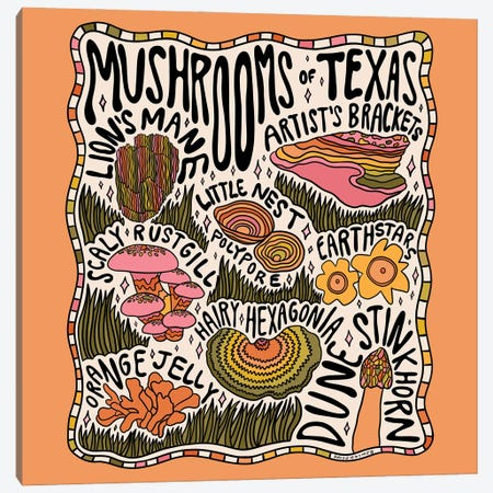 Mushrooms Of Texas Canvas Print #DDM112} by Doodle By Meg Canvas Wall Art