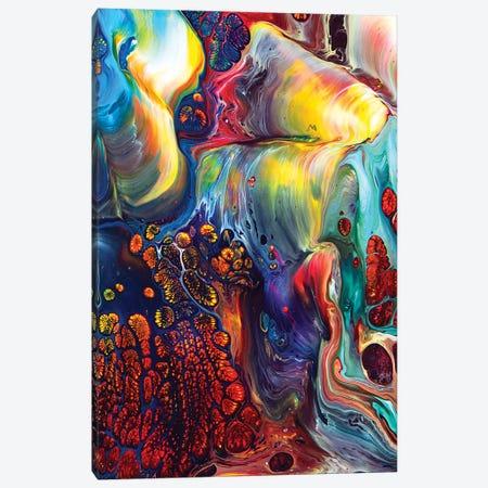 Abstract 2004 III Canvas Print #DDO21} by David Dolan Canvas Print