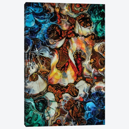 Abstract 2006 #4 Canvas Print #DDO63} by David Dolan Canvas Art Print