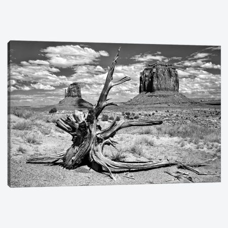 B&W Desert View V Canvas Print #DDR11} by David Drost Canvas Art Print