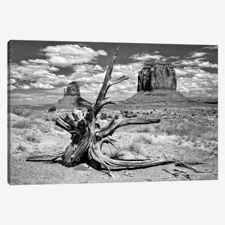 B&W Desert View V Canvas Print #DDR11} by David Drost Canvas Art Print