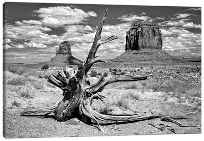 B&W Desert View V Canvas Art Print