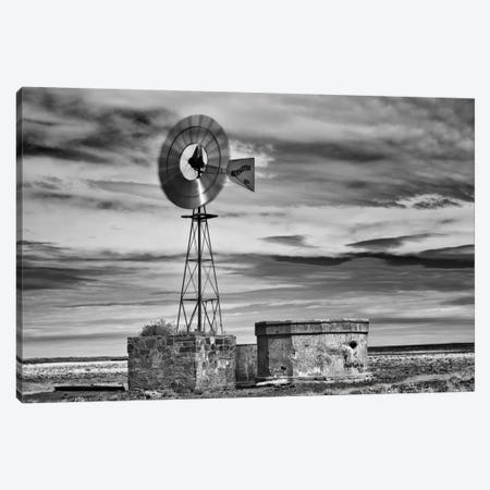 B&W Desert View VI 3-Piece Canvas #DDR12} by David Drost Canvas Print