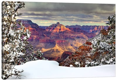 Snowy Grand Canyon I Canvas Art Print