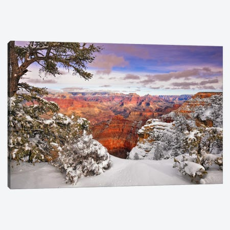 Snowy Grand Canyon II Canvas Print #DDR19} by David Drost Art Print