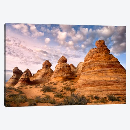 Arizona Peaks I Canvas Print #DDR1} by David Drost Art Print
