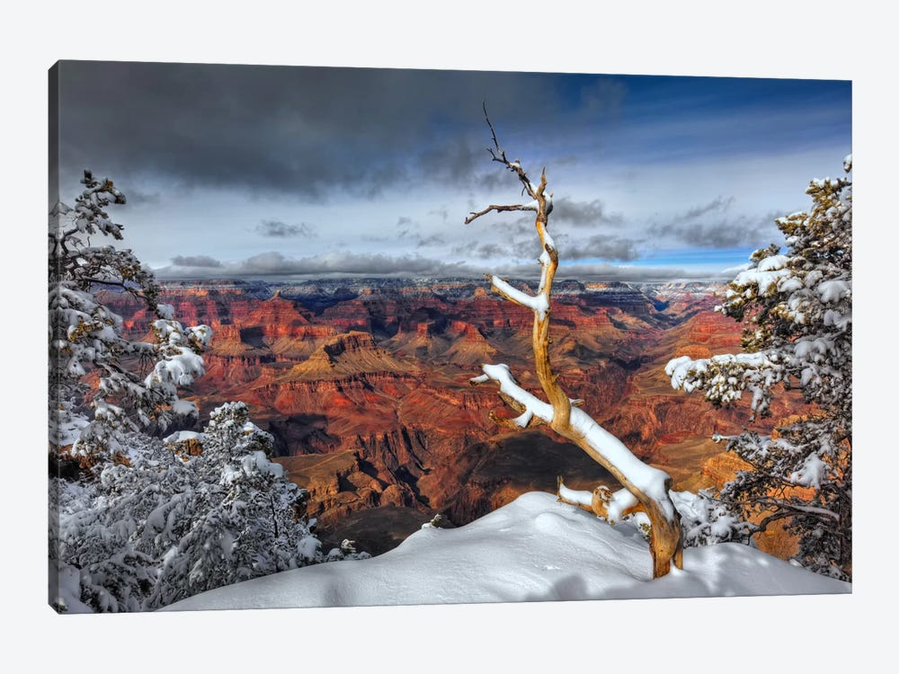 Snowy Grand Canyon III by David Drost 1-piece Canvas Art Print
