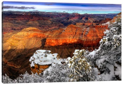 Snowy Grand Canyon IV Canvas Art Print
