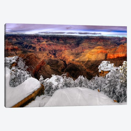 Snowy Grand Canyon VII Canvas Print #DDR24} by David Drost Art Print