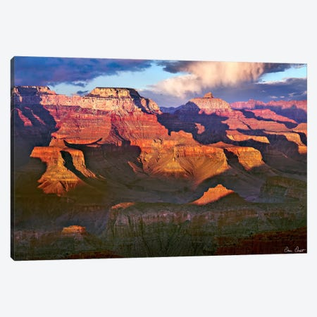Canyon View III Canvas Print #DDR27} by David Drost Canvas Art Print