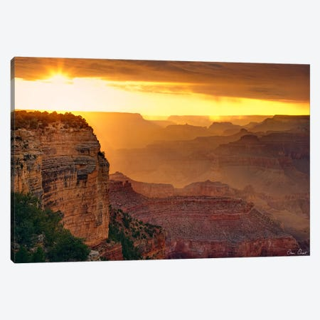 Canyon View IX Canvas Print #DDR29} by David Drost Canvas Art