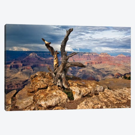 Canyon View V Canvas Print #DDR30} by David Drost Canvas Print