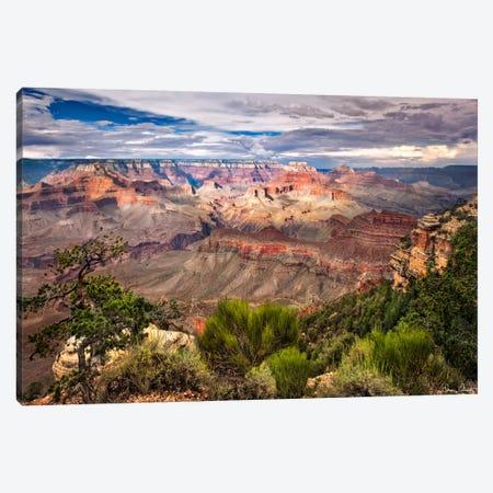 Canyon View VI Canvas Print #DDR31} by David Drost Canvas Art Print