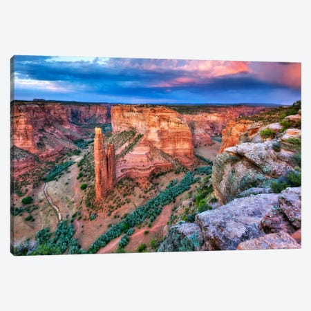 Canyon View VIII Canvas Print #DDR33} by David Drost Canvas Art Print
