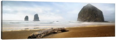 From Cannon Beach II Canvas Art Print