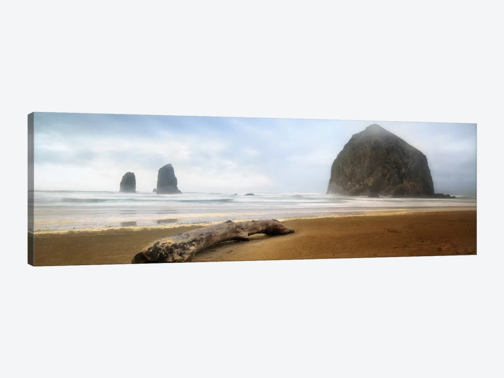 From Cannon Beach II by David Drost 1-piece Canvas Wall Art