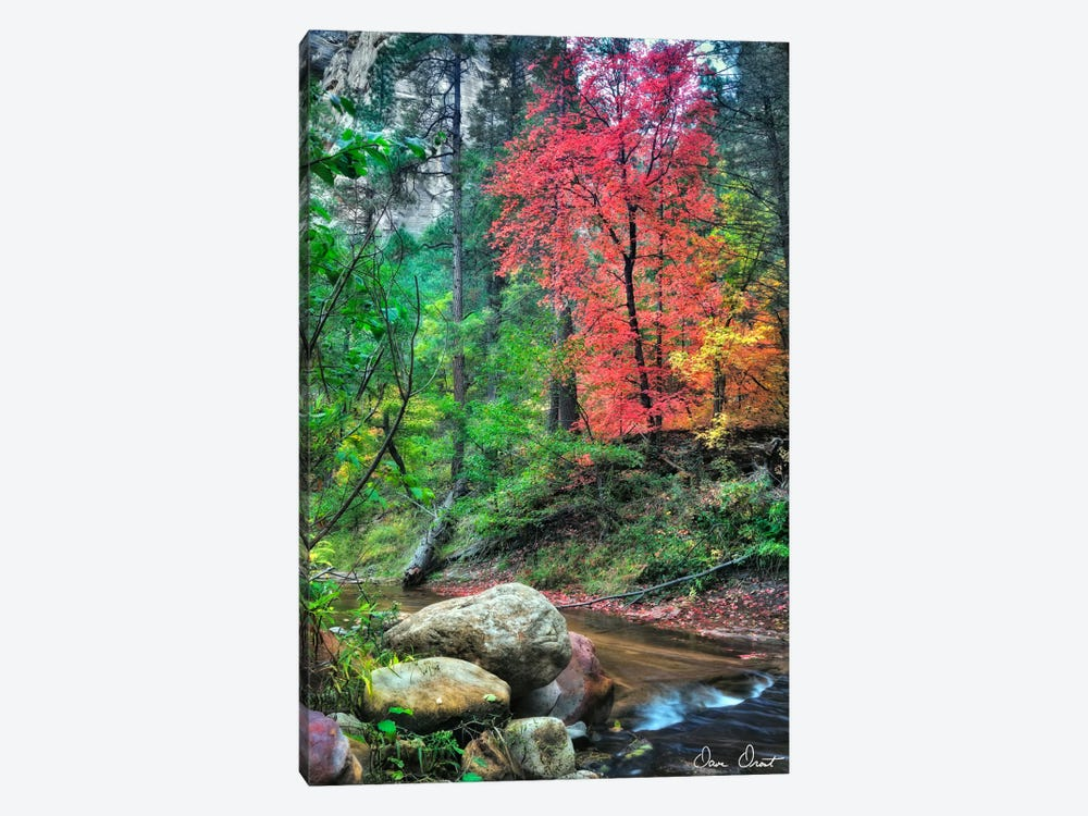 Peaceful Woods II by David Drost 1-piece Canvas Art