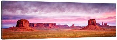 Pink Morning Glory V Canvas Art Print