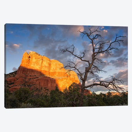 Sunset in The Desert II Canvas Print #DDR62} by David Drost Canvas Art