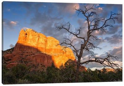 Sunset in The Desert II Canvas Art Print