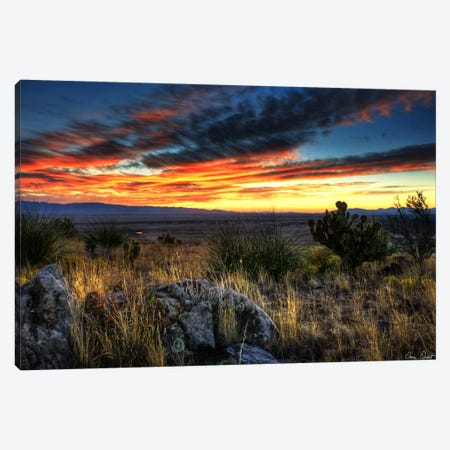 Sunset in The Desert IV Canvas Print #DDR64} by David Drost Canvas Art Print