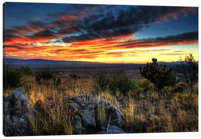 Sunset in The Desert IV Canvas Art Print