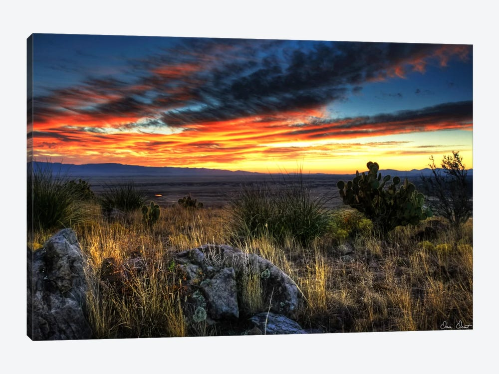 Sunset in The Desert IV by David Drost 1-piece Art Print