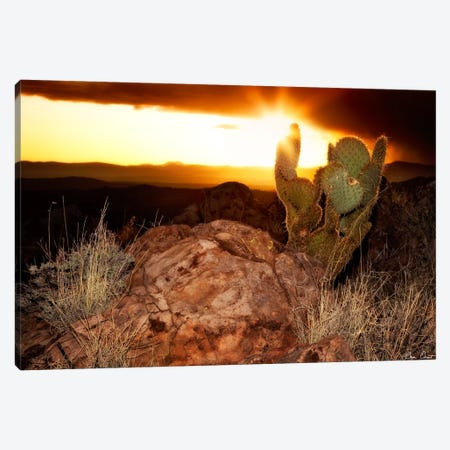 Sunset in The Desert V Canvas Print #DDR65} by David Drost Canvas Print