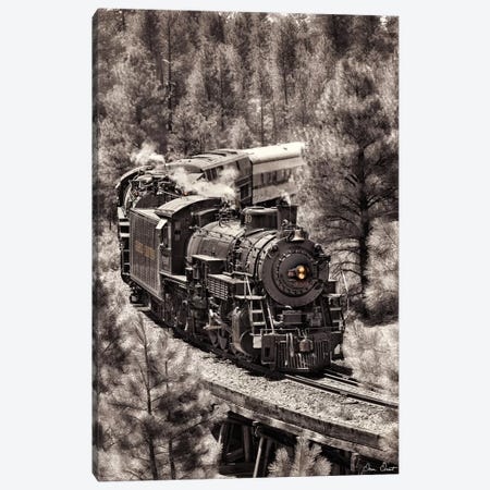 Train Arrival III Canvas Print #DDR70} by David Drost Art Print