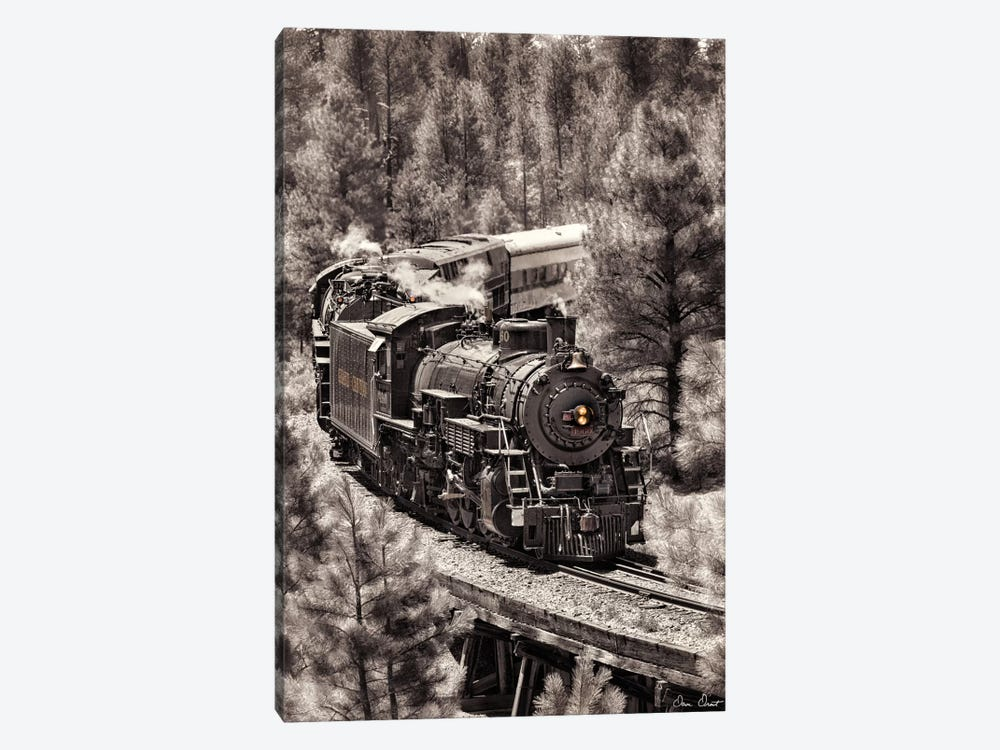 Train Arrival III by David Drost 1-piece Canvas Artwork