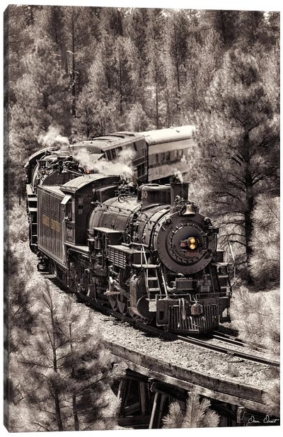 Train Arrival III Canvas Art Print
