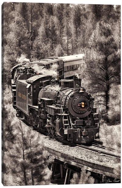 Train Arrival III Canvas Art Print