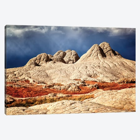 Valley Beauty I Canvas Print #DDR71} by David Drost Canvas Print