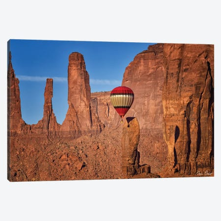 Valley Beauty VI Canvas Print #DDR76} by David Drost Canvas Artwork
