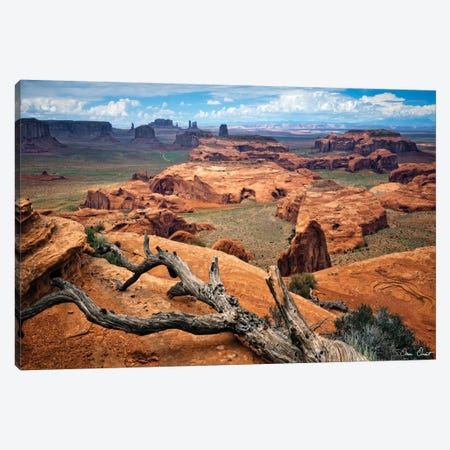 Valley Beauty VII Canvas Print #DDR77} by David Drost Canvas Art