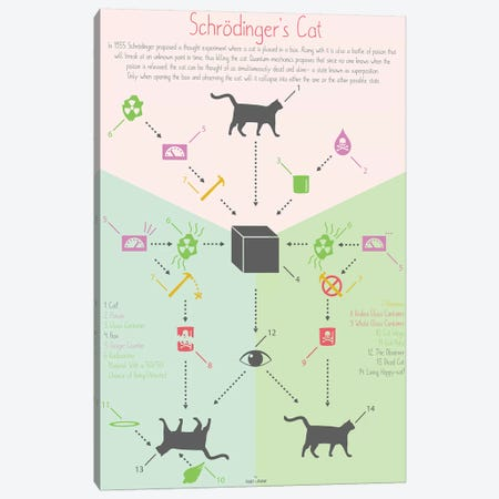 Schrödingers Cat Canvas Print #DDW28} by DAU-DAW Canvas Art Print