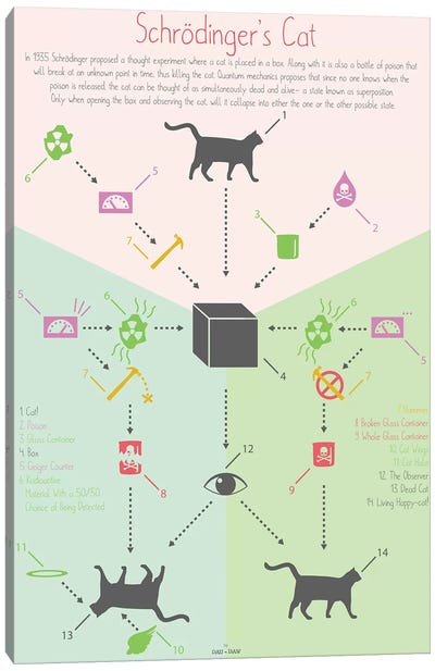 Schrödingers Cat Canvas Art Print