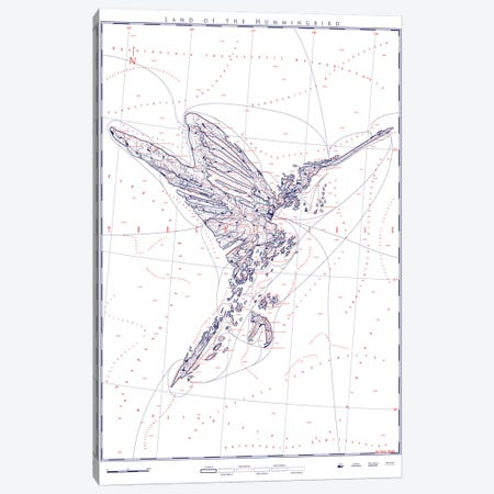 Hummingbird Canvas Print #DDW42} by DAU-DAW Canvas Art Print