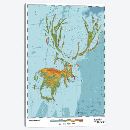 Deer Canvas Print #DDW6} by DAU-DAW Canvas Art Print