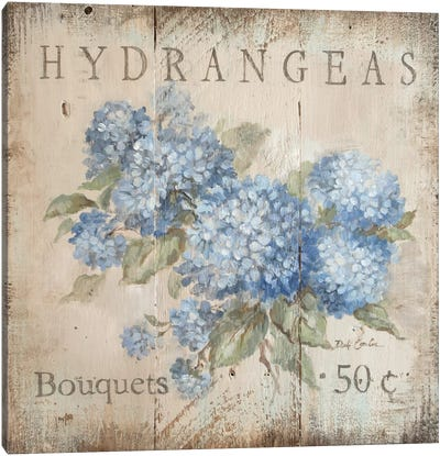 Hydrangeas Bouquets (50 Cents) Canvas Art Print