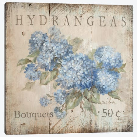 Hydrangeas Bouquets (50 Cents) Canvas Print #DEB109} by Debi Coules Canvas Print