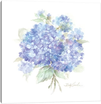 Hydrangeas I Canvas Art Print