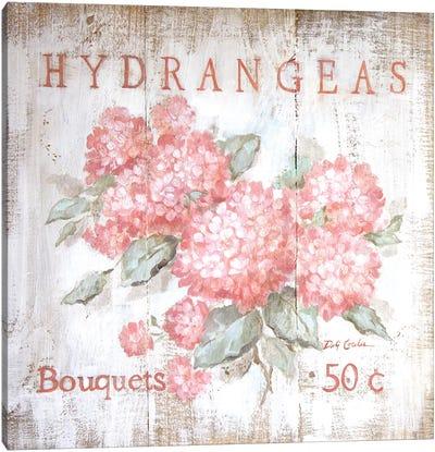 Coral Hydrangeas Canvas Art Print