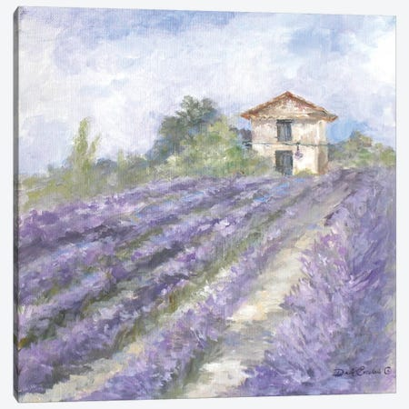 Lavender Fields Canvas Print #DEB16} by Debi Coules Canvas Print