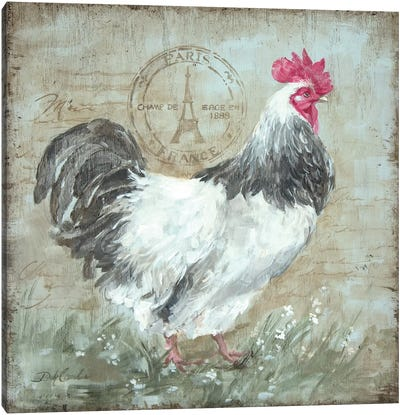 Parisian Postmarked Rooster I Canvas Art Print