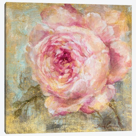 Rose Gold I Canvas Print #DEB85} by Debi Coules Canvas Art
