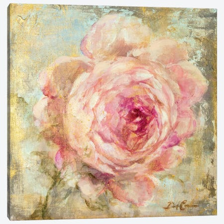 Rose Gold II Canvas Print #DEB86} by Debi Coules Canvas Wall Art