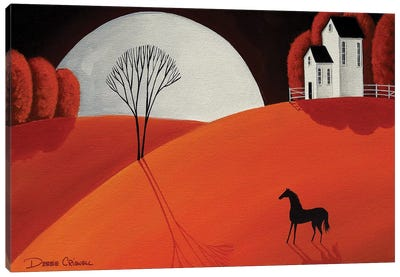 Pretty Pony Canvas Art Print